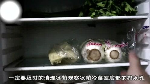 冰箱冷藏室结霜是什么原因