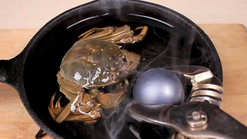 测试1000摄氏度的铁球能烤熟螃蟹吗?看小哥花式作死
