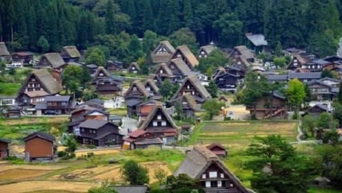 看完日本真实的农村现状,再看中国的农村,才知差距不是一般大