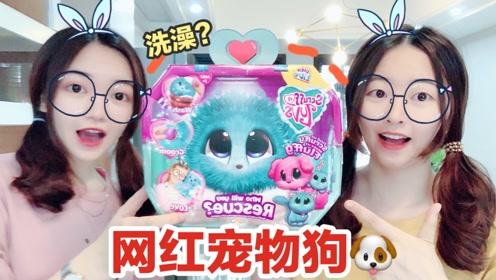 两姐妹试玩网红宠物狗,拆惊喜狗狗盒子,可以洗澡的毛绒玩具
