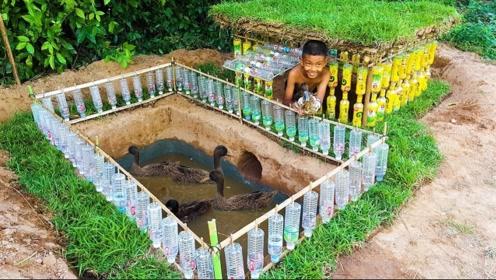 哥俩用塑料瓶为鹅建造别墅,泳池星空卧室一应俱全,网友:我慕了