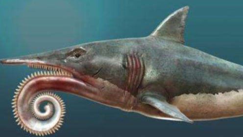 盘点一亿年前的凶物,恐龙也不是它们的对手,幸好早就灭绝了!