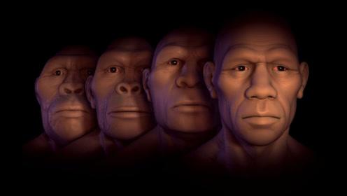 人类真的是猿猴进化来的吗?专家说出真相,看完陷入沉思!