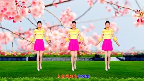 广场舞《蝴蝶双双飞》32步,歌好听舞好看