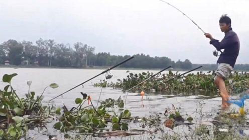 河边大叔正快速的收拉钓竿,结果第一竿就收获一条鲮鱼