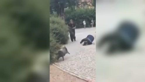当警察蜀黍遇到一只过于灵活的猪