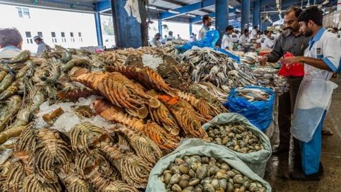 迪拜的海鲜市场是什么样?仔细一看才发现,竟还有鲨鱼卖!