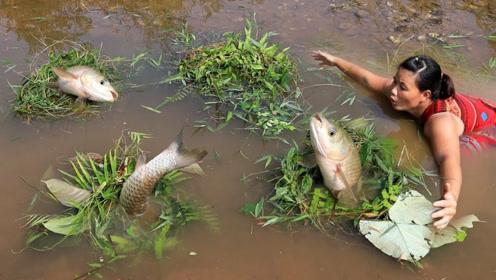 农村大嫂户外捕鱼,用一堆水草轻松搞定,来顿烤鱼吃的美滋滋