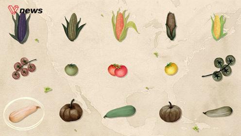 多样性不足或导致粮食危机,快救救身边濒危的植物吧