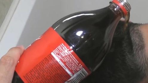 老外作死实验,竟用可乐来洗头,洗完之后发质令人惊艳
