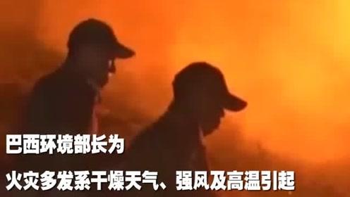 亚马孙雨林已持续燃烧近三周:起火原因各方说法不一