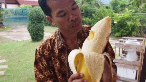 世界上最奇葩的国宝,竟然是一根香蕉,长得比手臂还粗
