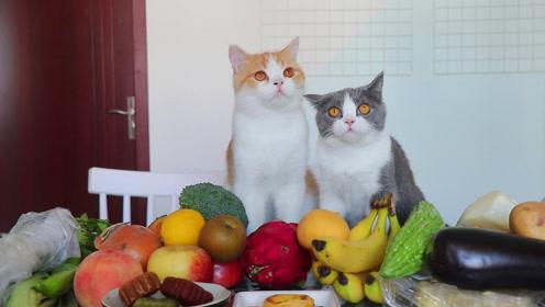 买来20多道果蔬,橘猫狂吃停不下来