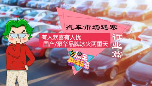汽车市场遇寒,为何国产品牌与豪华品牌冰火两重天