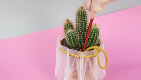 人家往花盆里藏根绳子,就能让花自动喝水,我怎么没想到呢?
