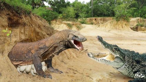 鳄鱼也要认怂吗?被此巨兽一巴掌扇飞,到底谁才是爬行界老大?