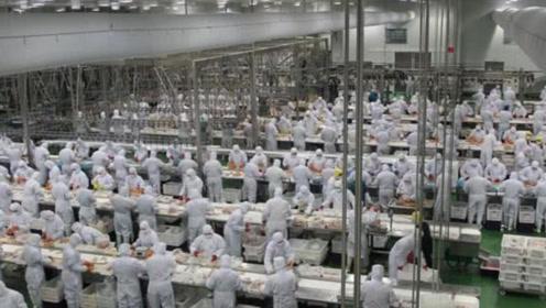 世界上最奇葩的工厂,员工必须穿尿不湿上班,场面堪比幼儿园!