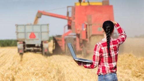 """中国大学生发明""""收割机"""",一天能收割12亩水稻,深受农民追捧"""