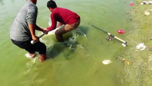 扔下鱼竿合力抄大鱼,进网那一刻所有人都尖叫起来