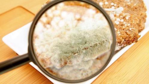 幼儿园食材发霉称是给老师吃的?发霉食品危害你知道吗