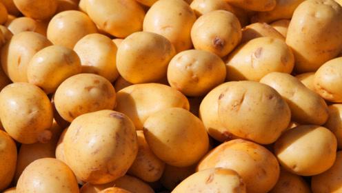 土豆容易发芽,只需要放上一把,放一个月也不会变质发黑!