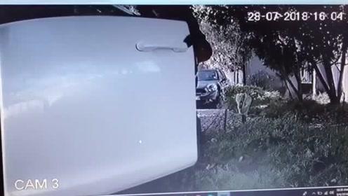 车子停路边被贼光顾,只因车主忘了这件事