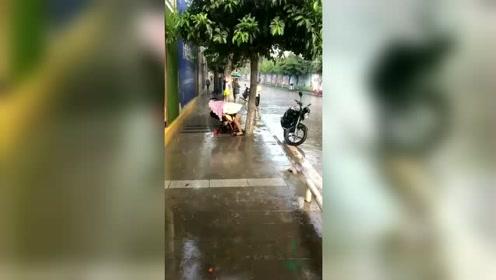 大雨突如其来,妈妈用自己的身体为小宝宝遮风挡雨