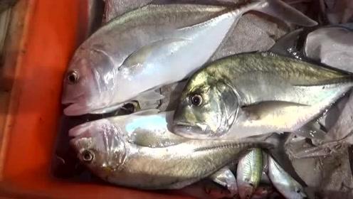 学会这套技能,能把卖鱼竿的气死,从此钓鱼不要鱼竿了