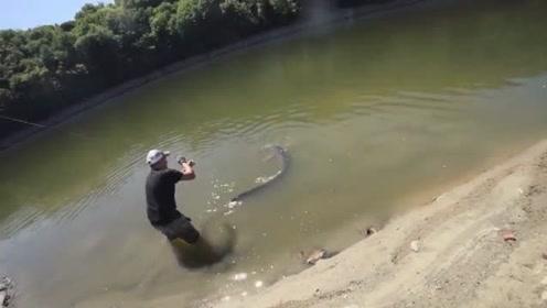 野钓这种超级大鱼,拼的就是耐力
