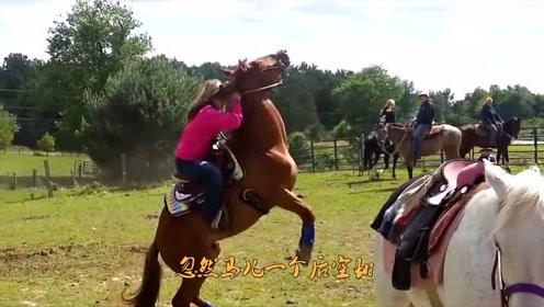 马不愿让女子骑,突然一个后空翻,镜头记录瞬间