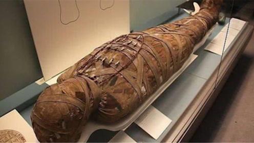 专家挖出2500年木乃伊,却听见肚子有声响,剖开后发现不简单