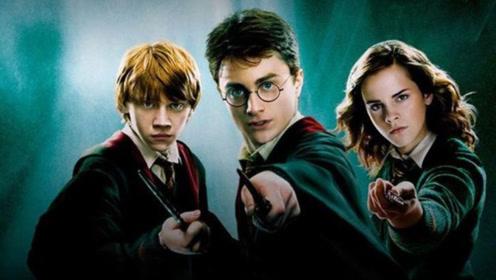 为啥没人翻拍《哈利波特》?看到这个原因,网友:终于明智了一次