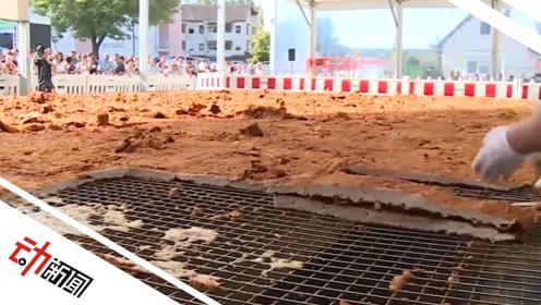 破世界记录!德国制作出70平方米1200公斤超大鸡排