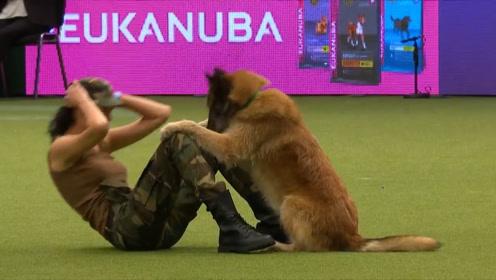 狗狗与女子表演,却做出了这个举动,下一秒,请憋住莫笑!