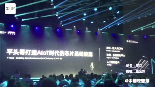 """马云拍板的平头哥发布AI推理芯片""""含光"""""""