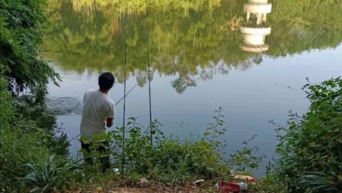 水库里的鱼都饿坏了,刚下竿就中鱼,小伙狂拉不停,太过瘾了!