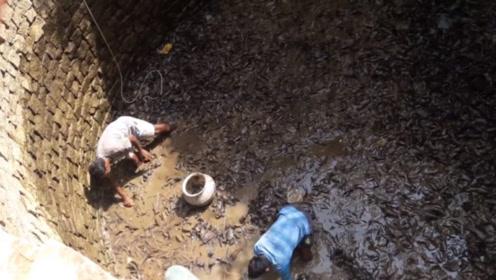 """废井传来诡异""""沙沙""""声,村民花17天将水抽干一看,黑压压一片"""