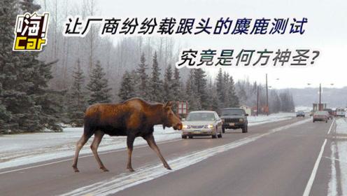 丰田、奔驰、Jeep纷纷栽倒 麋鹿测试究竟是何方神圣