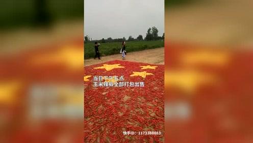农民拿700斤辣椒70公斤玉米 自制硬核国旗献礼建国70周年