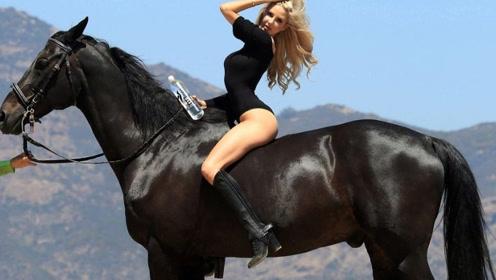 """""""上马""""可不是这么容易,马儿被外国美女使劲折腾。尴尬不已!"""