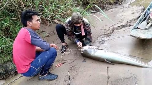 那么大的浮漂,都被鱼拖着走,鱼真大