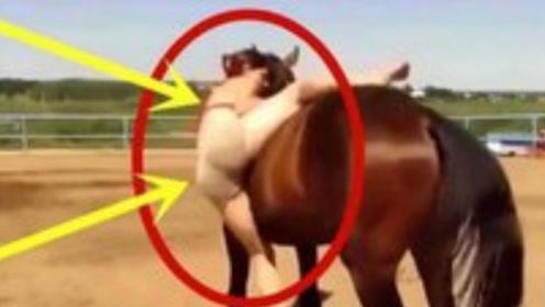 """外国美女第一次""""骑马"""",发生尴尬一幕,马的反应我能看十遍"""