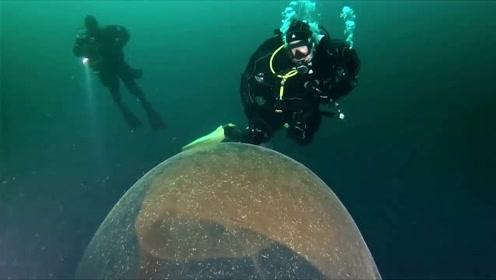 海底惊见巨型怪卵 专家惊呼非常罕见