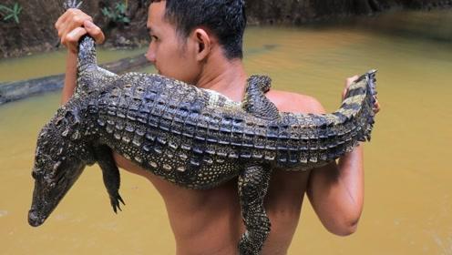 兄弟俩在野外抓了条鳄鱼,把鳄鱼腿先烤后炖,味道真是好极了