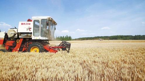 如果粮价上涨到2元一斤,农村能有多大变化?