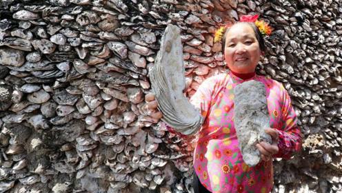 """中国""""最蚝""""的房子,用生蚝壳建造而成,网友:真正的""""蚝宅""""!"""