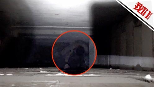浙江一油漆工不慎跌入地下二层电梯井 工友大锤凿墙硬核施救
