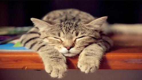 无精打采总想睡觉?拍打此处5分钟,轻松解秋乏!