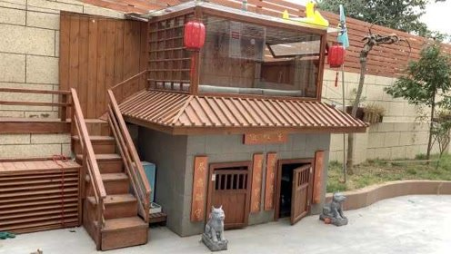最壕狗窝!主人花3万5为狗建别墅:空调泳池阳光房
