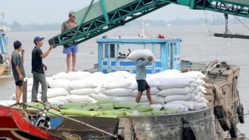 越南人口近亿,领土比云南省还要小,为啥还能大量出口大米?
